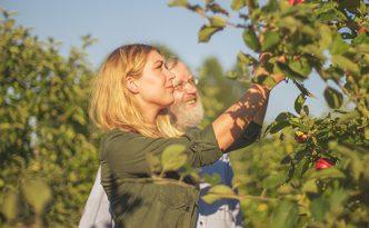Apfelplantage Clostermann
