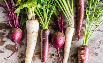 Bio-Gemüse aus der Region