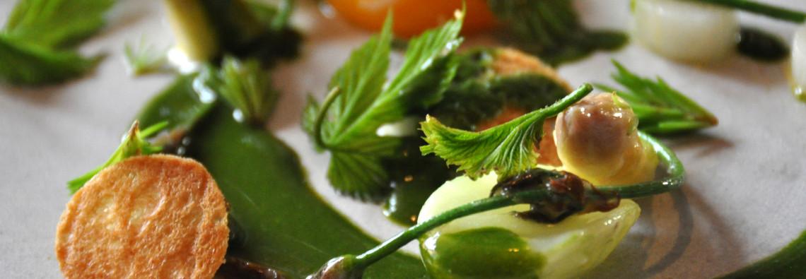 Biologisches Essen - Klimaschutz - GREEN CHEFS