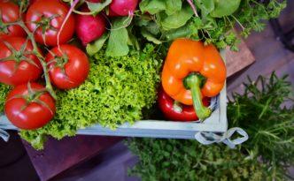 Biokiste für die Gastronomie