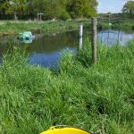 Automatisierte Fütterung - Fischzucht Reese