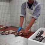 Fisch filetieren - Fischzucht Reese