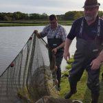 Karpfen-Peter bei der Arbeit - Fischzucht Reese