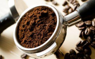 Gastronomen spenden Kaffeesatz als Düngermittel