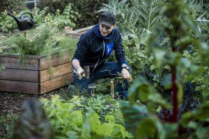 Im Garten mit Sebastian Copien