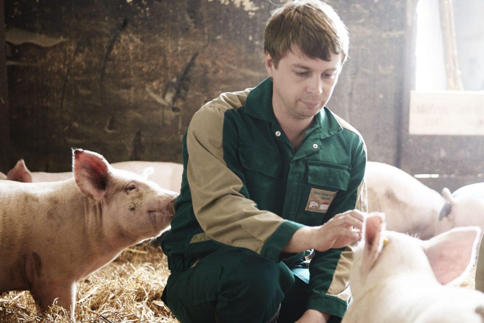 Lübchiner Strohschwein - Transgourmet UrsprungLübchiner Strohschwein - Transgourmet Ursprung