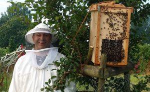 Ohne Bienen keine Äpfel!