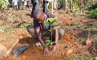 Orignal Beans - Klimapositive Schokolade schützt Mensch, Tier und Umwelt