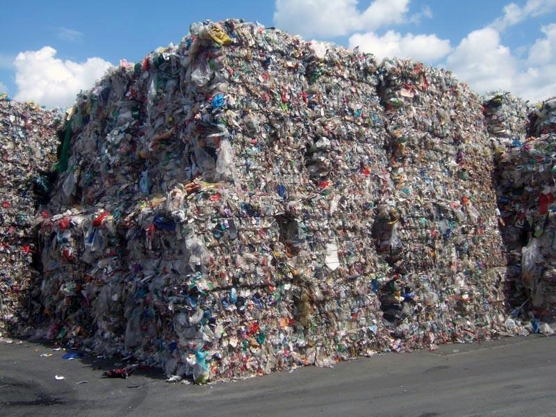 Plastik-Müll und Green-Chefs