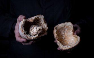 Salzteig ist ein Aroma-Safe - Fermentierter Sellerie von Sebastian Frank - Horvath